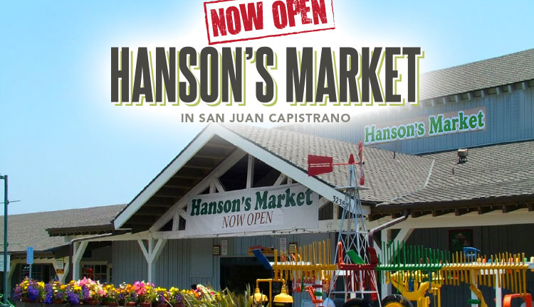 Hanson's Market