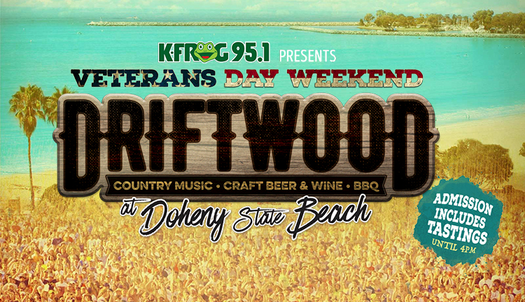 Driftwood at Doheny State Beach